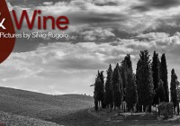 Exhibition – Mostra Light & Wine